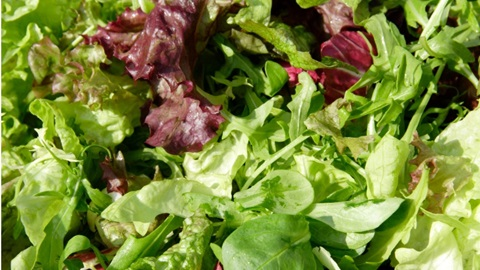 Salades mélangées en sachet: qualité, prix, valeur nutritionnelle, hygiène et conservation