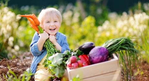 légumes de printemps