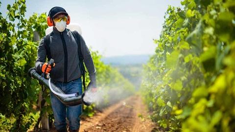 Des fruits sans pesticides ? Ce n'est pas impossible, montrent nos analyses