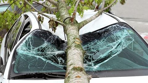 Votre assurance auto intervient-elle pour les dégâts dus à la tempête ?