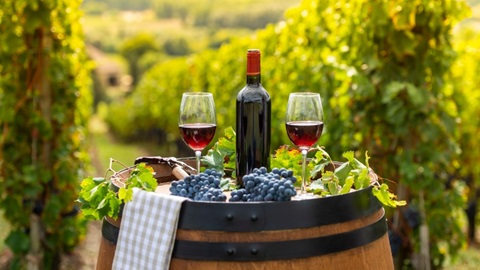 Vins rouges Côtes du Rhône