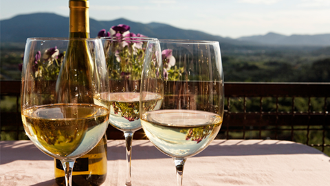 vins blancs languedoc