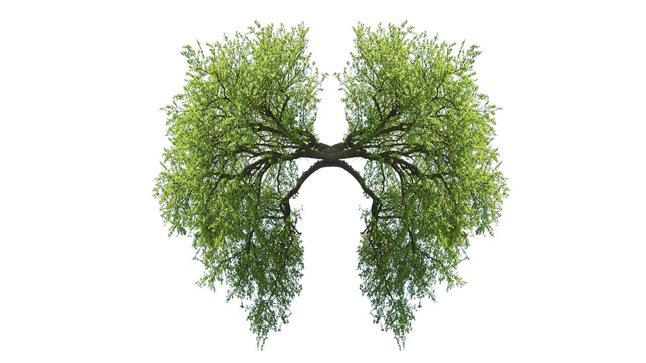 cancer-du-poumon